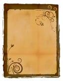 De bloementextuur van het document Stock Foto's