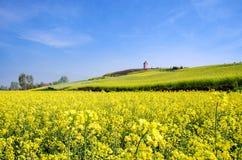 De bloemfestival van Hanzhongcanola royalty-vrije stock afbeeldingen