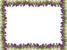 De bloemframe van de lente royalty-vrije stock afbeeldingen