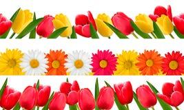 De bloemgrenzen van de lente. Vector. Royalty-vrije Stock Afbeeldingen