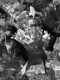 De bloemist bloeit zwart-wit Royalty-vrije Stock Foto