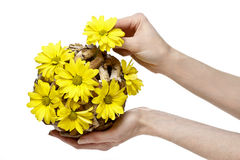 De bloemist toont hoe te om bloemensamenstelling te maken Stock Afbeelding