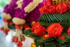 De bloemkegel van de monniksordening Stock Foto's