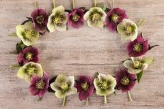 De bloemkroon van lenten de lentebloemen wordt gemaakt nam op rustieke achtergrond die toe Vlak leg, kopieer ruimte Royalty-vrije Stock Afbeelding