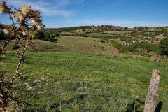 De Bloemlandschap van heilige, Cantal, Frankrijk Stock Afbeeldingen