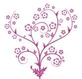 De bloempatroon van de pruim Stock Foto