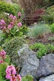 De bloemtuin van de lente royalty-vrije stock fotografie