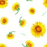 De bloemVector van de zon Stock Fotografie