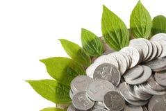 De bloemvorm van muntstukken en van installatiebladeren Stock Afbeeldingen