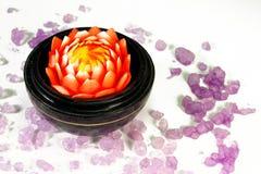 De bloesem van de bloem en overzees zout Royalty-vrije Stock Afbeelding