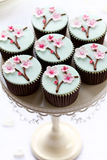 De bloesem van de kers cupcakes Stock Foto