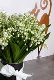 De bloesem van lelietje-van-dalenbloemen op witte achtergrond met decoratieve kat stock afbeeldingen