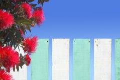 De bloesem van Pohutukawabloemen over houten omheining in Nieuw Zeeland Royalty-vrije Stock Afbeelding