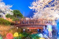 De bloesemfestival van de de lentekers bij Yeojwacheon-Stroom in Jinhae royalty-vrije stock foto's
