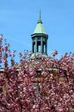 De bloesems en de Torenspits van de kers stock foto's
