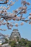 De bloesems van de kers bij het kasteel van Himeji stock afbeelding