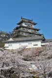 De bloesems van de kers bij het kasteel van Himeji royalty-vrije stock foto's