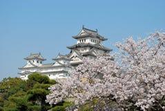 De bloesems van de kers bij het kasteel van Himeji royalty-vrije stock afbeelding
