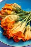 De Bloesems van de pompoen Royalty-vrije Stock Afbeeldingen