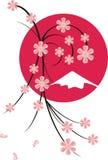 De bloesems van Sakura stock illustratie