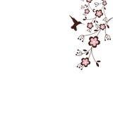 De Bloesems van Sakura Stock Afbeeldingen