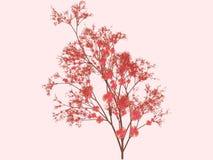 De bloesemsart. van Sakura vector illustratie