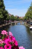 De blomma beströdde kanalerna av Leiden Royaltyfri Bild