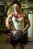 De bodybuilder leidt de spieren in de gymnastiek op De mens van de geschiktheid training Royalty-vrije Stock Afbeeldingen