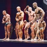 De bodybuilders tonen hun het meest spier in een opstellingcompariso stelt Stock Afbeelding