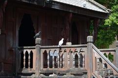De Boeddhistisch Heilig Schriftbibliotheek of Wat Thung Si Muang, Ubon Ratch Royalty-vrije Stock Foto