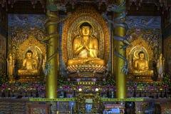 De Boeddhistische Tempel van Jejuisland's Yakcheonsa Stock Afbeeldingen