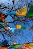 De boeddhistische Vlaggen van het Gebed Royalty-vrije Stock Afbeeldingen