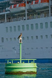 De boei van de teller en cruiseschip Stock Foto's