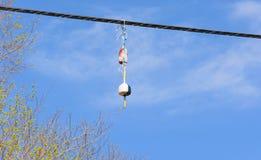 De boeien die van de zeekreeftval van telefoondraad hangen Royalty-vrije Stock Foto's