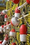De Boeien van de zeekreeft Stock Foto