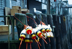 De Boeien van de zeekreeft op Werf in Portland, Maine Stock Afbeelding