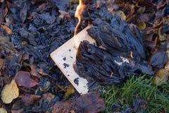 De boekbrandwonden Stock Afbeelding
