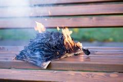 De boekbrandwonden Stock Foto's