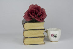 De Boeken van boekenboeken Royalty-vrije Stock Afbeeldingen