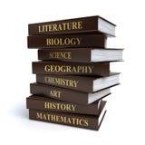 De boeken van de school stock illustratie