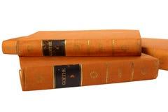 De boeken van Goethe Stock Foto