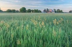 De Boerderij van de zomer Royalty-vrije Stock Afbeelding