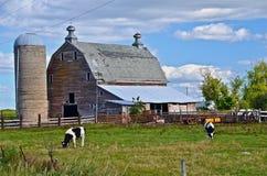 De boerderij wordt verlaten Stock Afbeelding