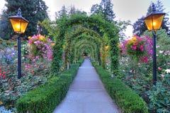 De bogen en de weg van de tuin Stock Fotografie