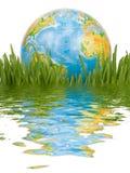De bol in een groen gras. Royalty-vrije Stock Afbeeldingen