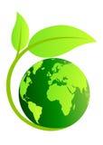 De bol van de ecologie Royalty-vrije Stock Foto's