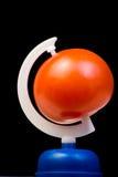 De bol van de tomaat Royalty-vrije Stock Afbeeldingen