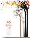 De bomen en de bladeren van de herfst stock illustratie