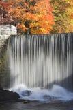 De bomen en de waterval van de daling Stock Afbeeldingen