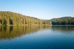 De Bomen en het Meer van de sequoia stock foto's